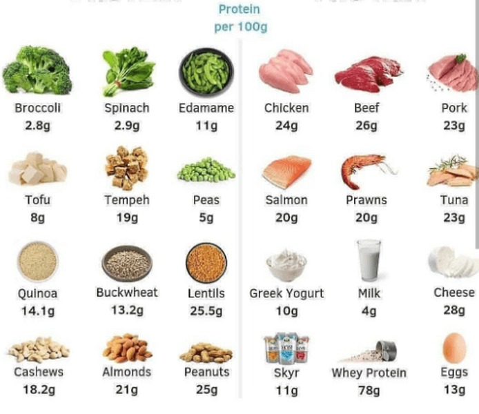 Protein amounts for good workout